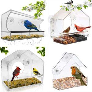 Wildvögel am Fenster füttern