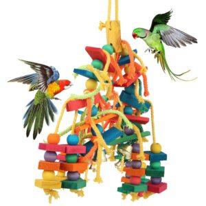 Papageien spielen