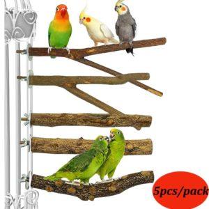 Vogel Sitzstangen kaufen