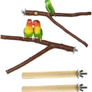 Heimvögel halten