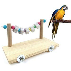 Sitzbrett Papagei