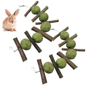 Kaninchen Doppelpack
