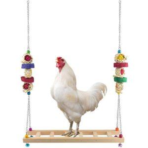 Huhn auf Schaukel