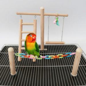 Vogel Spielplatz für Unzertrennliche
