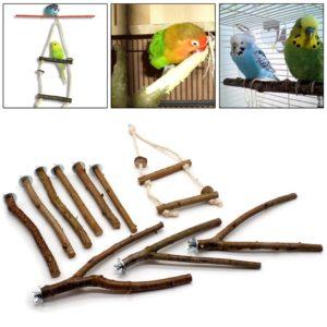 VogelzubehörSetsimBird Shop