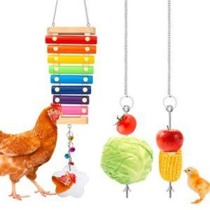 Artgerechtes Zubehör fürs Huhn