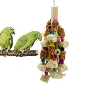 Amazonenpapageien Spielzeug