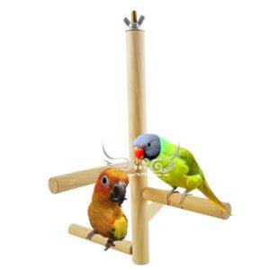 Papageien Sitzstange